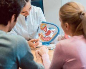 Maestría Internacional en Fertilidad y Reproducción Humana Asistida