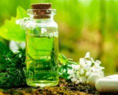 Maestría internacional en Homeopatía y Fitoterapia