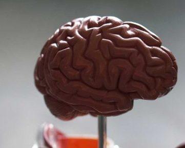 Maestría Internacional en Neuropsicología + Maestría Internacional en Deterioros Cognitivos